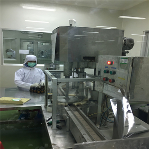 Visiting customer purchased automatic bottle filling line for capsule and tablet