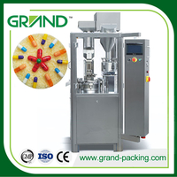 NJP-200 Small Automatic Hard Gelatin Powder Capsule Filling Machine Price